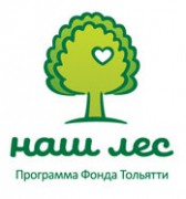 Организации Самарской области собирают макулатуру, чтобы помочь возродить лес Тольятти.